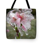 Peach Blossom In Ice Tote Bag
