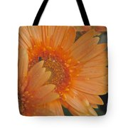 Peach Daisy Cluster Tote Bag