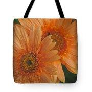 Peach Daisy Tote Bag