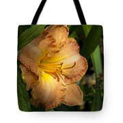 Peach Daylily Delight Tote Bag