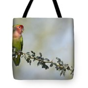 Peach Faced Love Bird Tote Bag