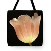 Peach Glow Tote Bag