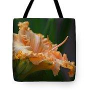 Peach Rufflette - Lily Tote Bag