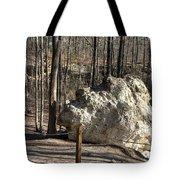 Peach Tree Rock-6 Tote Bag