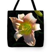 Peaches And Cream Tote Bag