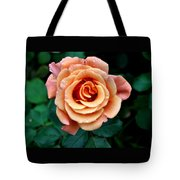 Peachesncream Tote Bag
