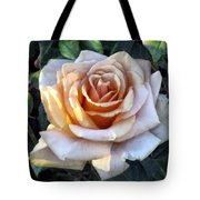 Peachpink Pout Tote Bag