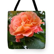 Peachy Elegance Tote Bag