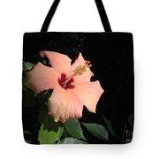 Peachy Hibiscus Tote Bag