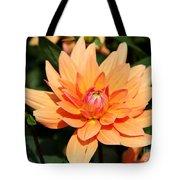 Peachy Petals Tote Bag