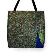 Peacock 17 Tote Bag