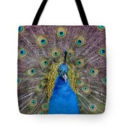 Peacock And Proud Plumage Tote Bag