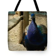 Peacock At The Fence Tote Bag