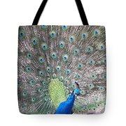 Peacock Bow Tote Bag
