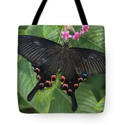 Peacock Butterfly Arizona Tote Bag