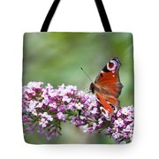 Peacock Butterfly  Inachis Io  On Buddleia Tote Bag