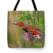 Peacock Butterfly On Thistle Square Tote Bag