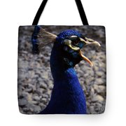 Peacock Caw Tote Bag