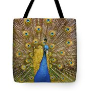 Peacock Courting Tote Bag