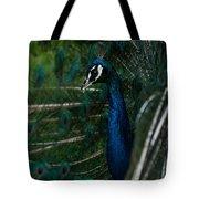 Peacock Dance Tote Bag
