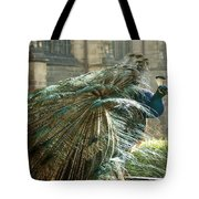 Peacock Flurry  Tote Bag
