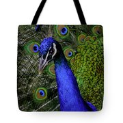 Peacock Head And Tail Tote Bag