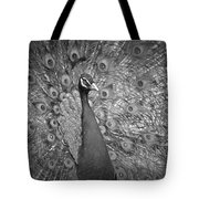 Peacock In Black And White Tote Bag