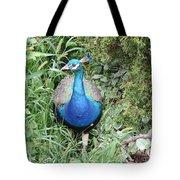 Peacock In The Brush Tote Bag