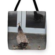 Peacock Mom And Kids 1 Tote Bag