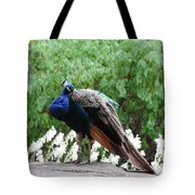 Peacock On A Rock 2 Tote Bag