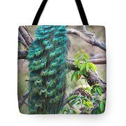 Peacock Perching On A Branch, Kanha Tote Bag