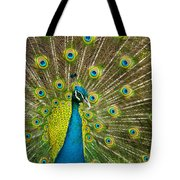 Peacock Pride Tote Bag
