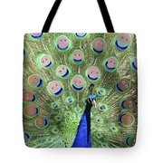 Peacock Smiles Tote Bag