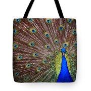 Peacock Squared Tote Bag