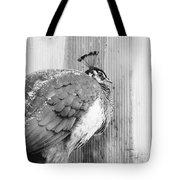 Peafowl Tote Bag