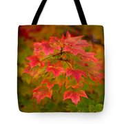 Peaking Desire Tote Bag