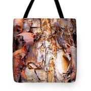Pealing Bark Upclose Tote Bag
