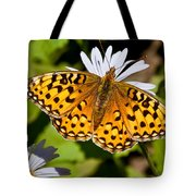 Pearl Border Fritillary Butterfly On An Aster Bloom Tote Bag