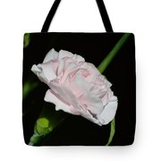 Pearl Spotlight Tote Bag