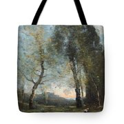 Peasant Woman Collecting Wood Tote Bag