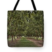 Pecan Orchard Sahuarita Arizona Tote Bag