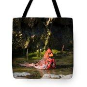 Pedernales Park Texas Bathing Cardinal Tote Bag
