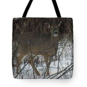 Peek A Boo Deer Tote Bag