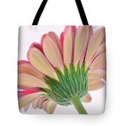 Peek A Pink Tote Bag