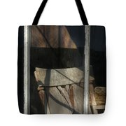 Peek Into The Past Tote Bag by Sandra Bronstein
