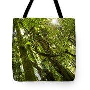 Peeking In Costa Rica Rain Forest Tote Bag