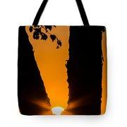 Peeking Sun Tote Bag