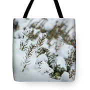 Peeking Through The Snow Tote Bag
