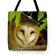 Peering Barn Owl Tote Bag