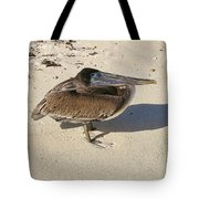 Pelican And His Shadow Tote Bag